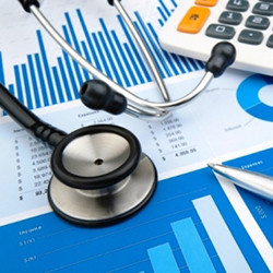 Healthcare and Social Assistance